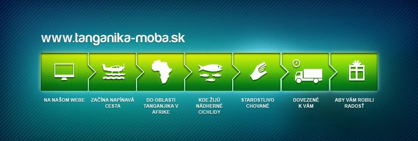 Na našom webe začína napínavá cesta do oblasti Tanganjika v Afrike, kde žijú nádherné cichlidy, starostlivo chované, dovezené k vám aby Vám robili radosť.